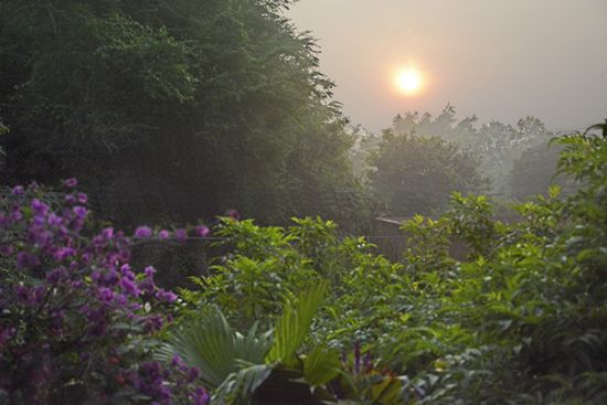 Misty sunrise in Auroville (photo: Sven)